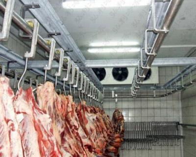 冷库设计方案,肉类冷库生产设计